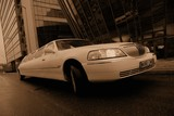 Limuzinu nuoma   10. LINCOLN TOWN CAR  